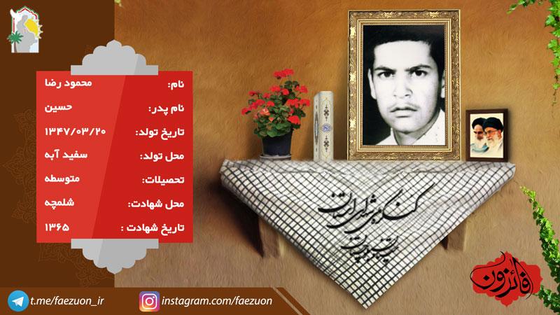 شهید رضا