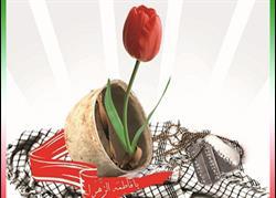 شاعر استاد محمود رضا یعقوبی آل بمناسبت شهادت حضرت زهرا(س)